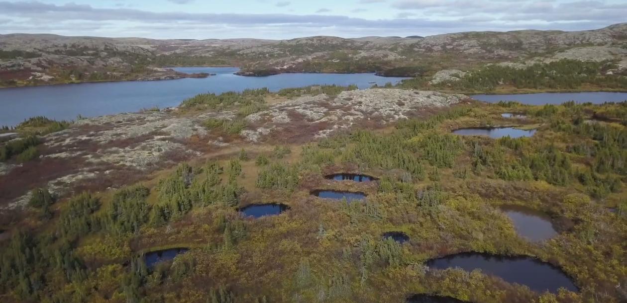 Arctique : la Nasa découvre des millions de sources de méthane | Le blob, l'extra-média