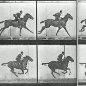 Figer le mouvement : Marey et Muybridge entre Art et Science